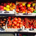 Tomatoes at Parkway Greens, Camden Town