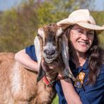 chuckling goats