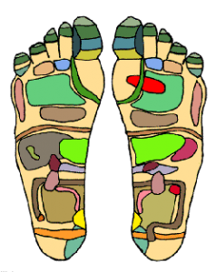 Reflexology map